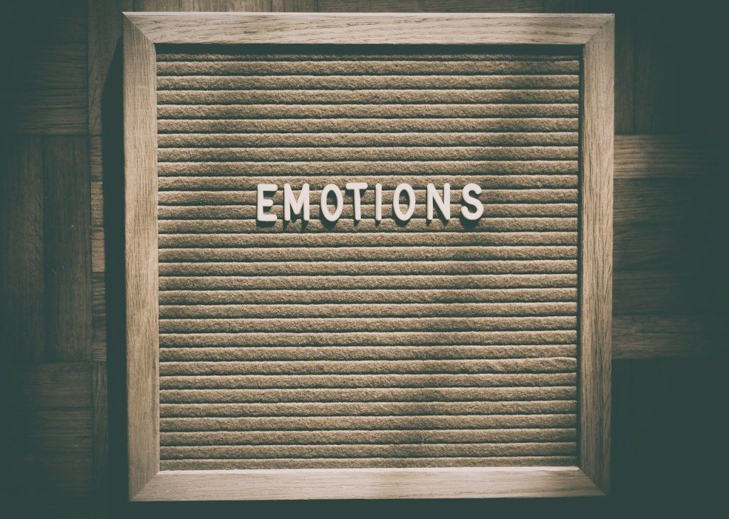emotions eco marc tempelman euradio